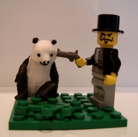 If This Picture Doesn\'t Get Into Explore, The Panda Gets It!