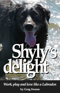 All self-help books are bullshit? Get all the DISC for none of the risk.Find the love for life your dog never lives a day without at Amazon.com:Shyly's delight: Work, play and love like a Labrador.